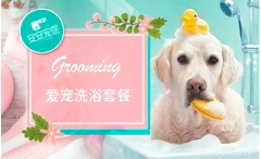 【无锡安安】精品狗狗洗护套餐(5kg以内)