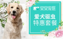 【安安宠医苏州】爱犬进口单次驱虫