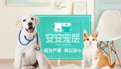 【安安宠医苏州】美容基础护理服务,节假日通用