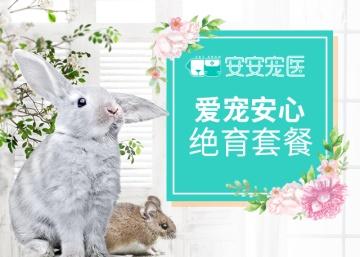 公兔绝育套餐 公兔