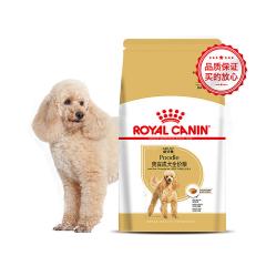 皇家贵宾成犬PD30 1.5kg