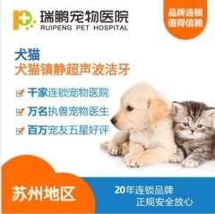【苏州瑞鹏】犬猫镇静超声波洁牙 犬猫通用