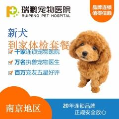 【南京瑞鹏】新犬到家体检 狗狗