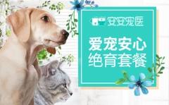 【深圳绝育】深圳安安绝育 吸入麻醉绝育套餐 犬猫通用【深圳安安、芭比堂】 犬猫通用