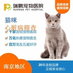【南京瑞鹏】猫咪心脏病筛查套餐 猫咪