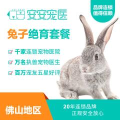 【安安宠医佛山】兔子绝育手术 公兔子