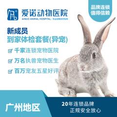 【爱诺广州-雅泰】新养兔子/龙猫/仓鼠体检套餐 兔子/龙猫/仓鼠/荷兰猪