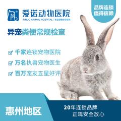 【爱诺惠州】异宠粪便常规检查