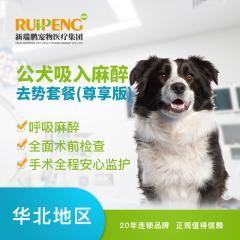 【新瑞鹏北京】公犬吸入麻醉去势套餐(尊享版) 公犬呼吸麻醉 吸入麻醉