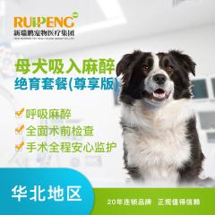 【新瑞鹏北京】母犬吸入麻醉绝育套餐(尊享版) 母犬呼吸麻醉 吸入麻醉