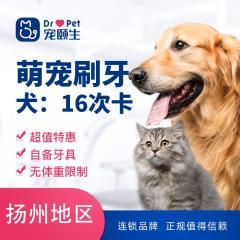 【扬州】新春萌宠刷牙16次卡(犬)