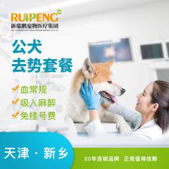 【新瑞鹏天津+新乡】公犬去势套餐 公犬呼吸麻醉 0-10kg