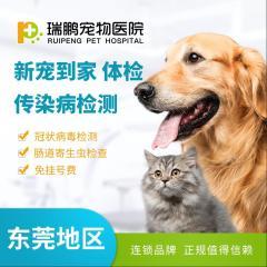 【东莞体检】新宠到家 体检/传染病检测【东莞瑞鹏】 新宠犬猫