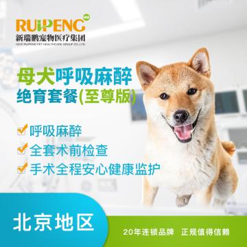 【新瑞鹏华北】10kg以内母犬吸入麻醉绝育套餐(至尊版) 母犬呼吸麻醉 绝育套餐