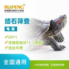 【新瑞鹏全国】结石筛查(龟类) 龟类 1次