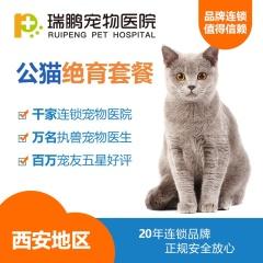 【西安新瑞鹏】公猫去势套餐(含术前体检) 猫咪【呼吸麻醉】+【术前检查】 0-10kg
