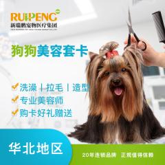 【新瑞鹏华北】狗狗美容套卡 6次卡 0-6kg