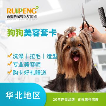 【新瑞鹏华北】狗狗美容套卡 18次卡 15-20kg