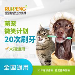 【新瑞鹏全国】到店服务-萌宠微笑计划 犬猫通用 20次