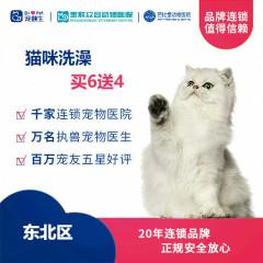 新春【新瑞鹏-东北区】猫咪洗澡次卡买6送4 长毛
