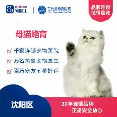 【新瑞鹏沈阳、盘锦、锦州】母猫绝育 母猫绝育