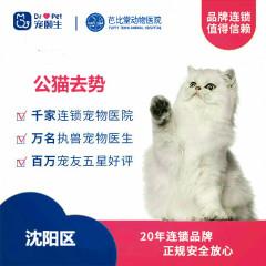 【新瑞鹏沈阳、锦州、盘锦】公猫去势 公猫去势
