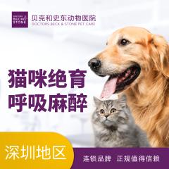 【深圳绝育】猫咪呼吸麻醉绝育【深圳贝克福田】 母猫绝育