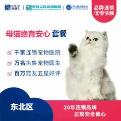 【新瑞鹏-东北】母猫绝育安心套餐 母猫安心绝育套餐