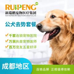 【成都通用】公犬超值去势套餐 公犬【呼吸麻醉】 0-5kg