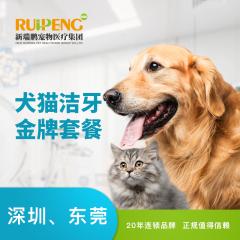 【大湾洁牙】犬猫呼吸麻醉洁牙金牌套餐 犬猫通用
