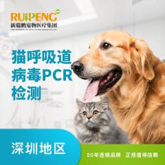 【深圳体检】猫呼吸道病毒PCR检测【深圳凯特喵】 猫咪 体检套餐