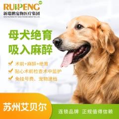 【苏州艾贝尔】母犬绝育吸入麻醉 母犬绝育吸入麻醉 0-5kg