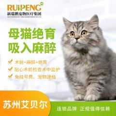 【苏州艾贝尔】母猫绝育吸入麻醉 母猫绝育吸入麻醉 0-5kg