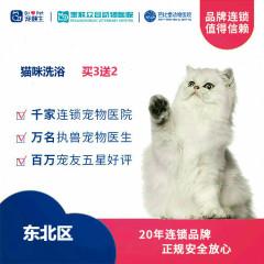 【新瑞鹏-东北区】猫咪洗澡买3送2 短毛猫咪