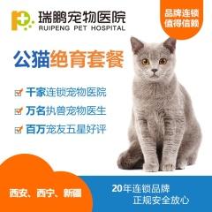 【西安、西宁、新疆新瑞鹏】公猫绝育套餐(含术前血常规) 公猫去势基础套餐 0-10kg