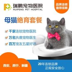 【西安、西宁、新疆新瑞鹏】母猫绝育套餐(含术前血常规) 常规版(母猫) 0-10kg