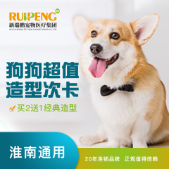 【淮南艾贝尔】狗狗造型3次卡(爱美必备) 狗狗经典造型买2送1 0≤3kg
