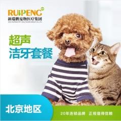 【新瑞鹏华北】犬猫洁牙套餐(<10kg) 狗狗 0-10kg