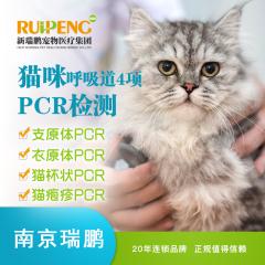 【南京瑞鹏】猫呼吸道四项PCR检测 猫咪 支原体+衣原体+杯状+疱疹