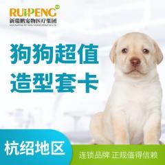 【通盛/中园花苑/嘉德】狗狗超值造型套卡 0-3kg 买3送1