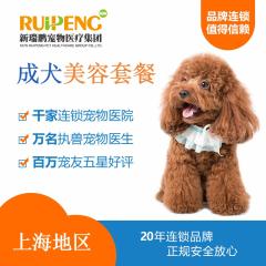 【阿闻上海】犬精细洗浴10送5套餐(郊区版) 狗狗洗澡 0-3kg