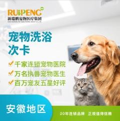 【滁州清流西路】宠物精细级洗浴次卡买五送四 3≤W<6