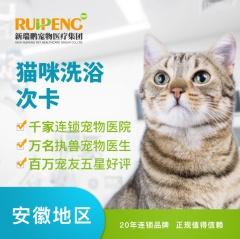 【安徽瑞鹏、宠颐生、艾贝尔】猫咪美毛护肤浴次卡(8次) 猫咪W<2(短毛)