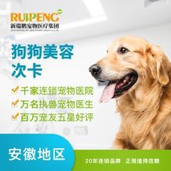 【滁州清流西路】宠物造型次卡买五送五 3≤W<6