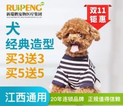 【鹰潭信江分院】特惠犬经典造型卡买3送2 犬经典造型3送2 0-3kg
