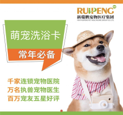 【宜兴安安】新春超值犬10+3/猫10+6 精细洗浴卡 0-3kg犬