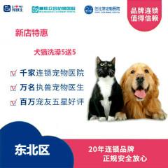 【新瑞鹏-东北区】新店特惠犬猫洗澡5送5 猫·长毛