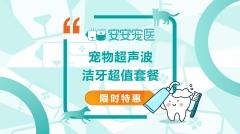 【厦门安安】【孕宠】安心包(2个月无限次B超) 犬猫通用 孕检B超+X光
