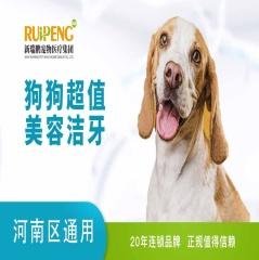 【河南通用】超值美容洁牙 狗狗 0-10kg