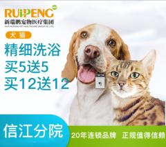 【鹰潭信江分院开业特惠】新春特惠犬猫洗浴卡充5送5、12送12 长毛5送5 0-3kg